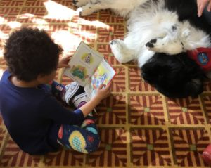 young person reading a book to a dog who is happily listening
